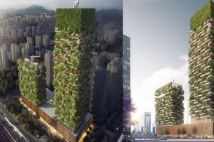 Forest on Buildings
